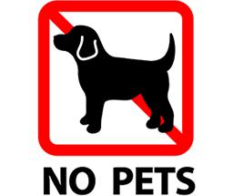 ペットを飼うことは禁じられています